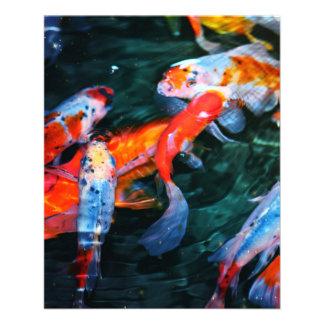 "Koi Fish 4.5"" X 5.6"" Flyer"