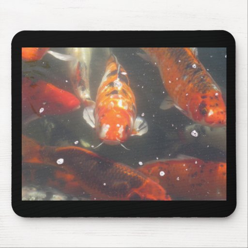 Koi Fish glide among the still green  waters Mouse Pads