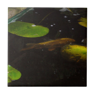 Koi ceramic tiles for Square fish pond