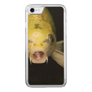Koi Fish in Japan Carved iPhone 8/7 Case
