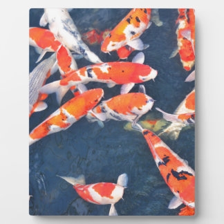 Koi fish plaque