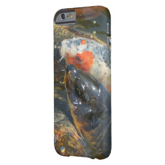 Koi Fish Pond Lake Barely There iPhone 6 Case