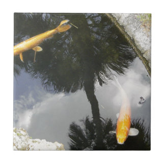Fish pond home decor pets products for Square fish pond