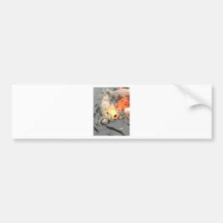 Koi Fish Prints Bumper Sticker