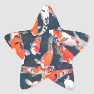 Koi fish star sticker