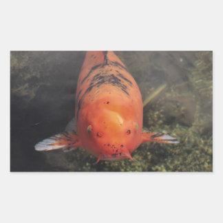 Koi Fish Rectangular Stickers