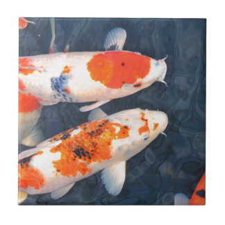 Koi fish tile