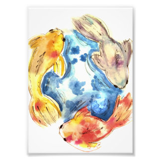 Koi Fish Watercolors Photograph