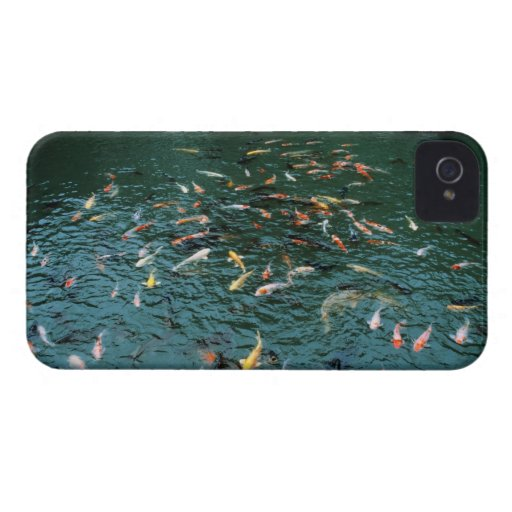 Koi in a Pond iPhone 4 Case-Mate Cases