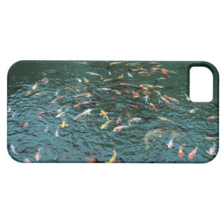 Koi in a Pond iPhone 5 Covers