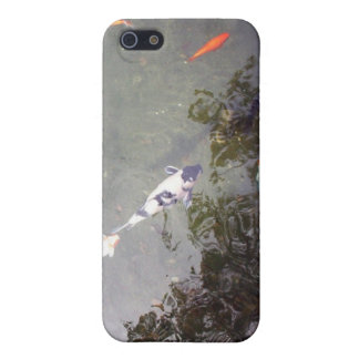 Koi- iPhone 5/5S Covers