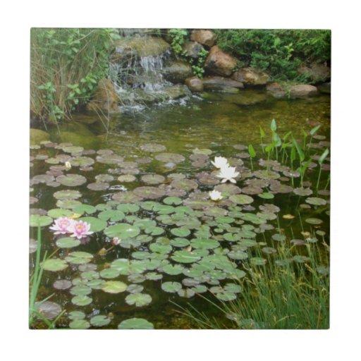 Koi pond tile zazzle for Minimum depth for koi pond
