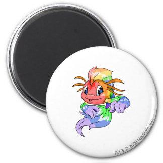 Koi Rainbow Magnet