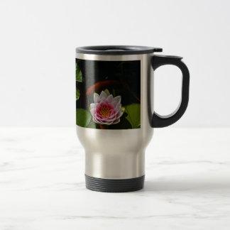 koi swimming around lotus coffee mugs