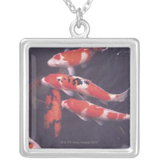 Koi swimming in pool silver plated necklace