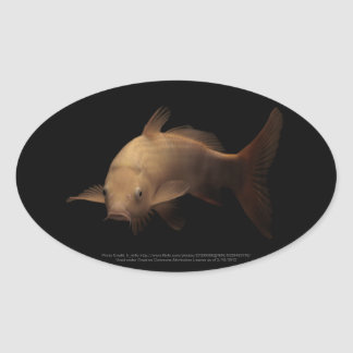 Koi with Black Background Oval Sticker