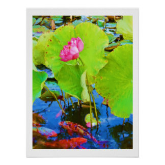Koi with Pink Lotus Flower Painting Poster