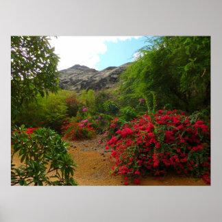 Koko Crater Botanical Garden Print