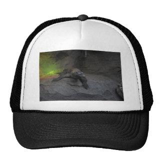 Komodo Dragon Cap