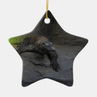 Komodo Dragon Ceramic Star Decoration