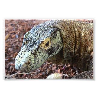 Komodo Dragon Notebook Photo Print