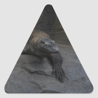 Komodo Dragon Triangle Sticker