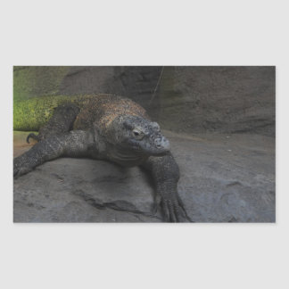 Komodo Dragon Rectangular Sticker