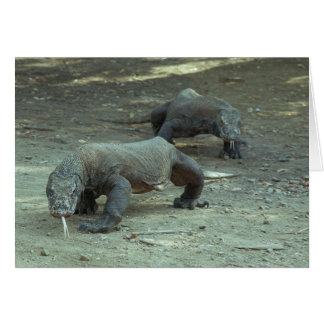 Komodo Dragons Card