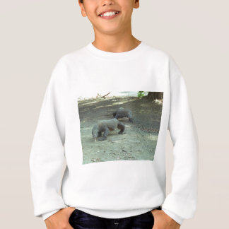 Komodo Dragons Sweatshirt