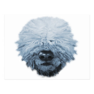 Komondor Dog Postcard
