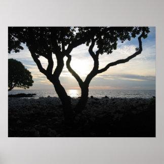 Kona Coast, Hawaii Poster