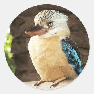 Kookaburra Classic Round Sticker