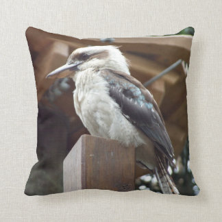 Kookaburra Cushion