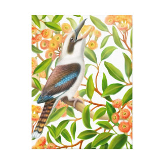 Kookaburra in Red Gum Tree Wrapped Canvas Canvas Prints