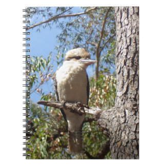 Kookaburra in tree notebook