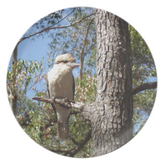 Kookaburra in tree plate