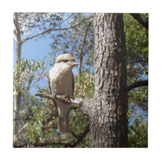 Kookaburra in tree tile
