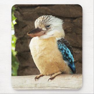 Kookaburra Mouse Mat