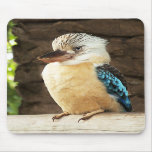 Kookaburra Mousemats