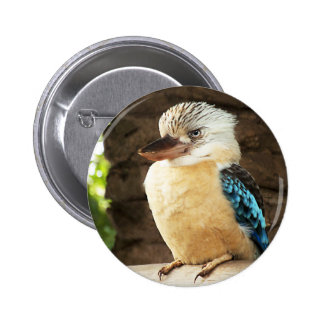 Kookaburra Pinback Button