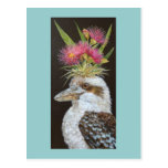 Kookaburra with eucalyptus postcard