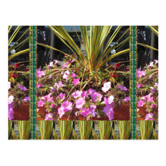 KOOL flowers grass giveaway RETURN GIFTS for party Post Card