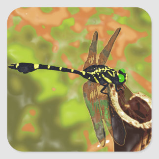 kooniyanma dragonfly