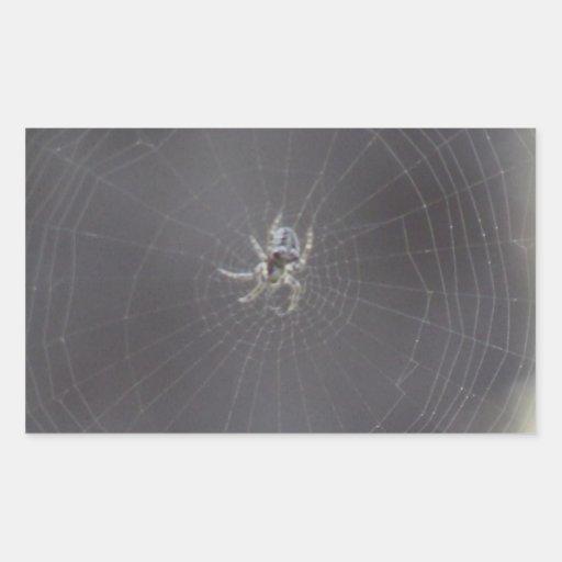 Kooskooskia Idaho Insects Arachnids Spiders Rectangle Sticker