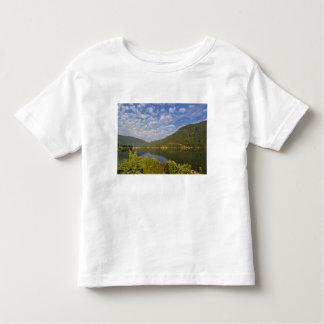 Kootenay Lake in Nelson British Columbia T-shirt