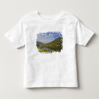 Kootenay Lake in Nelson British Columbia T-shirts