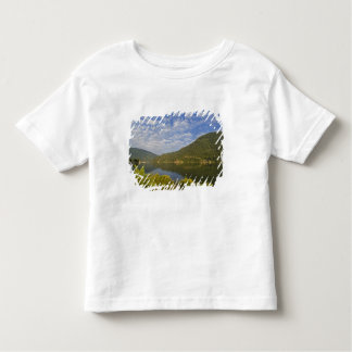 Kootenay Lake in Nelson British Columbia Toddler T-Shirt