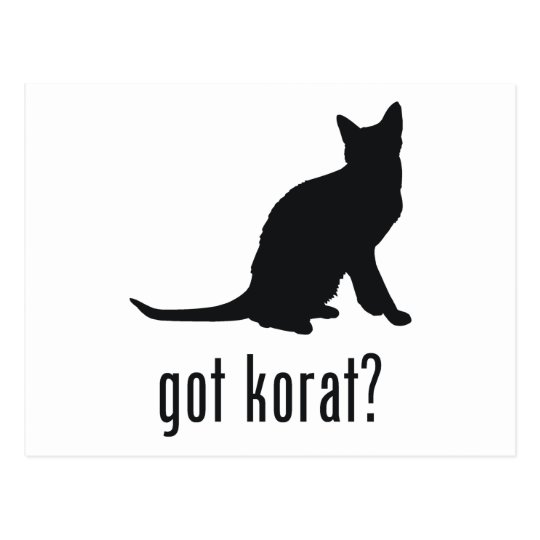 Korat Cat Postcard