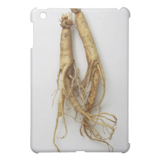 korean food,ginseng iPad mini case
