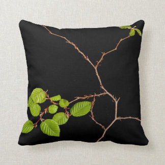 korean Hornbeam bonsai pillow Cushions